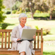 Retired woman working on her laptop — Stockfoto