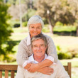 Elderly couple in the park — Stock Photo #10858087