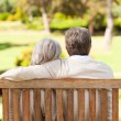 Stock Photo: Lovers on the bench