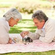 Elderly couple playing chess — Stock Photo #10858256