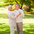 Senior couple dancing in the park — Stock Photo #10858384