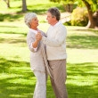Senior couple dancing in the park - Stock Photo