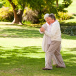 Mature couple dancing in the park - Foto Stock