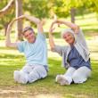 Stock Photo: Elderly couple doing their stretches in park