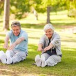 Elderly couple doing their stretches in the park — Stock Photo #10858671