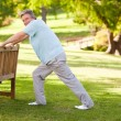 Stock Photo: Retired mdoing his stretches in park