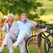 Elderly couple with their bikes — Stock Photo #10858704