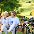 Mature couple with their bikes — Stock fotografie