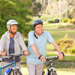 Mature couple with their bikes — Stock Photo