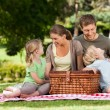 Joyful family picnicking in the park — Stock Photo #10859354
