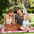 Joyful family picnicking in the park — Stock Photo #10859362