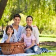 familie picknicken in het park — Stockfoto