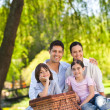 Foto Stock: Family picnicking in the park
