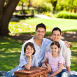Family picnicking in the park - Stock Photo