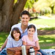 Happy family picnicking in the park — Foto de Stock