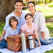 Happy family picnicking in the park — ストック写真