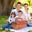 Happy family picnicking in the park — 图库照片
