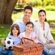 Happy family picnicking in the park — Stock Photo #10859958
