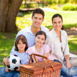 Happy family picnicking in the park — Stok fotoğraf
