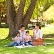 Cute family picnicking in the park — Stock Photo #10859964