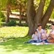 Cute family picnicking in the park — Stok fotoğraf