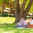 Cute family picnicking in the park — Stock Photo #10859973