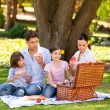 Cute family picnicking in the park — ストック写真