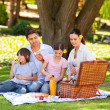 Lovely family picnicking in the park - Foto Stock
