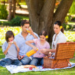 Lovely family picnicking in the park — Stockfoto