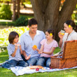Lovely family picnicking in the park — 图库照片