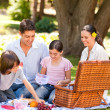 Lovely family picnicking in the park — ストック写真