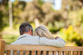 Elderly couple sitting on the bench with their back to the camer — Stockfoto