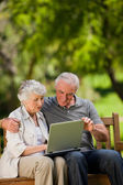 Elderly couple looking at their laptop — Stock Photo