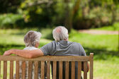 Couple sitting on the bench with their back to the camera — Stock Photo