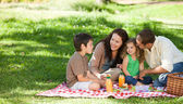 Family picnicking together — Stock Photo