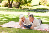 Couple reading a book in the park — Stock Photo