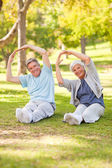Elderly couple doing their stretches in the park — Stock Photo