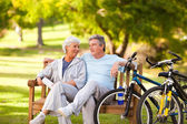 Elderly couple with their bikes — Foto de Stock