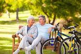 Pareja de ancianos con sus bicicletas — Foto de Stock
