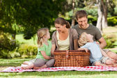 うれしそうな家族は公園でピクニック — ストック写真