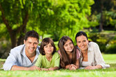 Family lying down in the park — Foto Stock