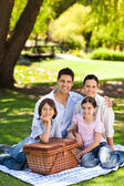 Family picnicking in the park — Stock Photo