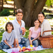 Stock Photo: Joyful family picnicking in the park