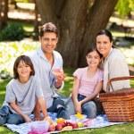 família alegre, um piquenique no parque — Foto Stock
