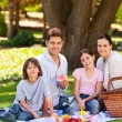 Joyful family picnicking in the park — 图库照片