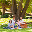 Foto de Stock  : Joyful family picnicking in the park