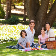 Joyful family picnicking in the park — Zdjęcie stockowe