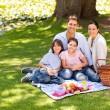 Joyful family picnicking in the park — Stockfoto