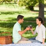 在公园里野餐的年轻夫妇 — 图库照片
