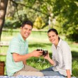 Royalty-Free Stock Photo: Young couple  picnicking in the park